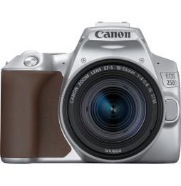 Reflex Canon EOS 250D + objectif EF-S 18-55mm f/4-5.6 IS STM (3461C001AA)